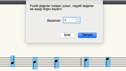 Notaları kaydırmak için bir basamak değeri girin. Artı değerler notaları tizleştirir. Eksi değerler pesleştirir.